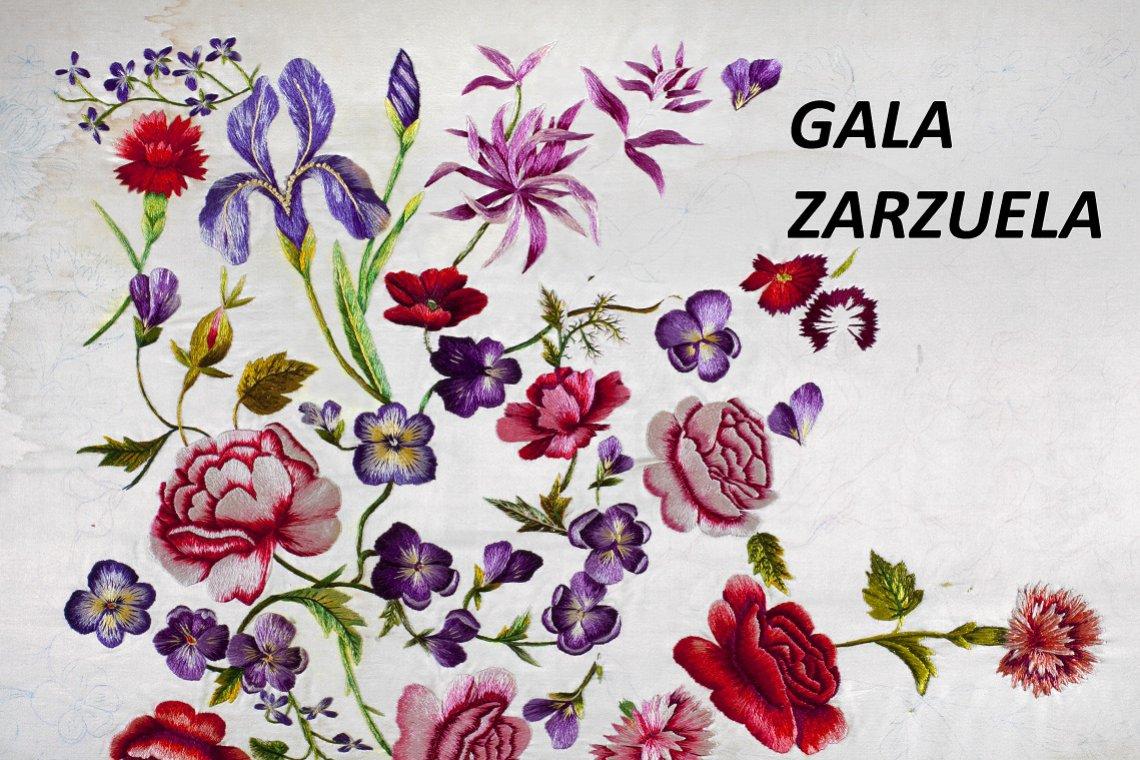 Gala Zarzuela - Concierto extraordinario